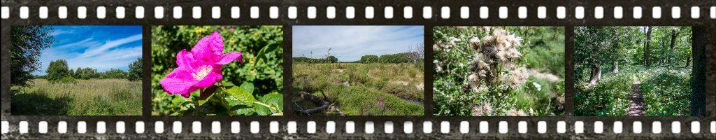 Landschaftspark Fuhrkamp